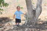 Jack next to an older tree with baby trees in background.